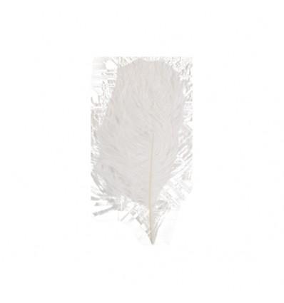Struisveer wit (28-32cm)