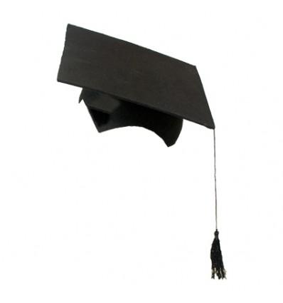 Professor hoed vilt zwart (2-delig)
